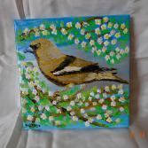 Vogel im Frühling