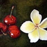 Kirschen mit Blüte