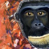 Tiere Afrikas-Schimpanse