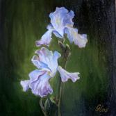 Lilienblüten