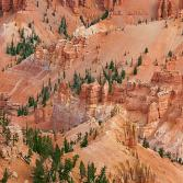 Jericho Ridge (Cedar Breaks, USA)
