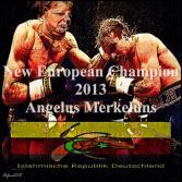 Boxwahlkampf 2013