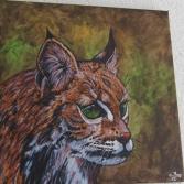Luchs - Bobcat