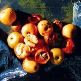 Apfelstudie III