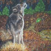 Grauwolf im Walde