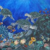 Karettschildkröten im Korallenriff