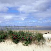 Strand auf Föhr