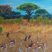 Gazelles in the Savanna