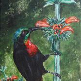 Nectar Junkie