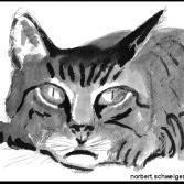 Tuschebild Katze