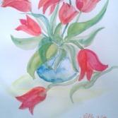 Tulpen - Tulips