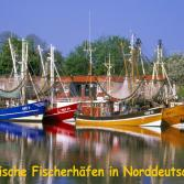 Malerische Fischerhäfen