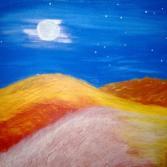 Wüste im Mondschein