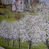 Kirschblüte in Ottoschwanden