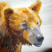 Grizzly Kopf
