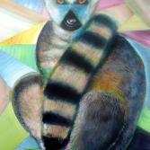 Katta, Lemurenbaby