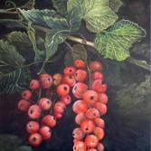 Johannisbeere (Ribes rubrum)
