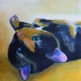 Katze Susi II