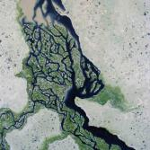 Flussdelta