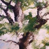 Baum in Bewegung I