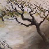 Baum in Bewegung - Waldflucht