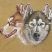 Wolf Werner