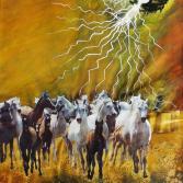 VU 17 Galoppierende Pferdeherde 1