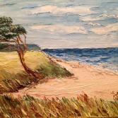 Küste mit Kiefer