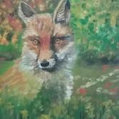 Fuchs im hohen Gras