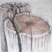 Holzpfosten am Strand
