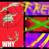 Gorilla - WHY