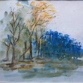 Hortensien im Spreewald