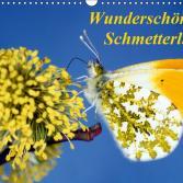 Schmetterlingskalender