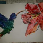 Kolibri küsst Orchide
