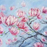Magnolia Pracht