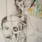 Anatomie Spigel