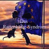 Das Rattenkäfig-Syndrom