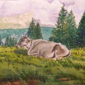 liegende Kuh - Dolomiten