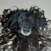 Hund Lady auf AcrylPouring