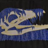 Krokodilschädel