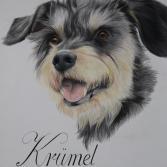 Krümel